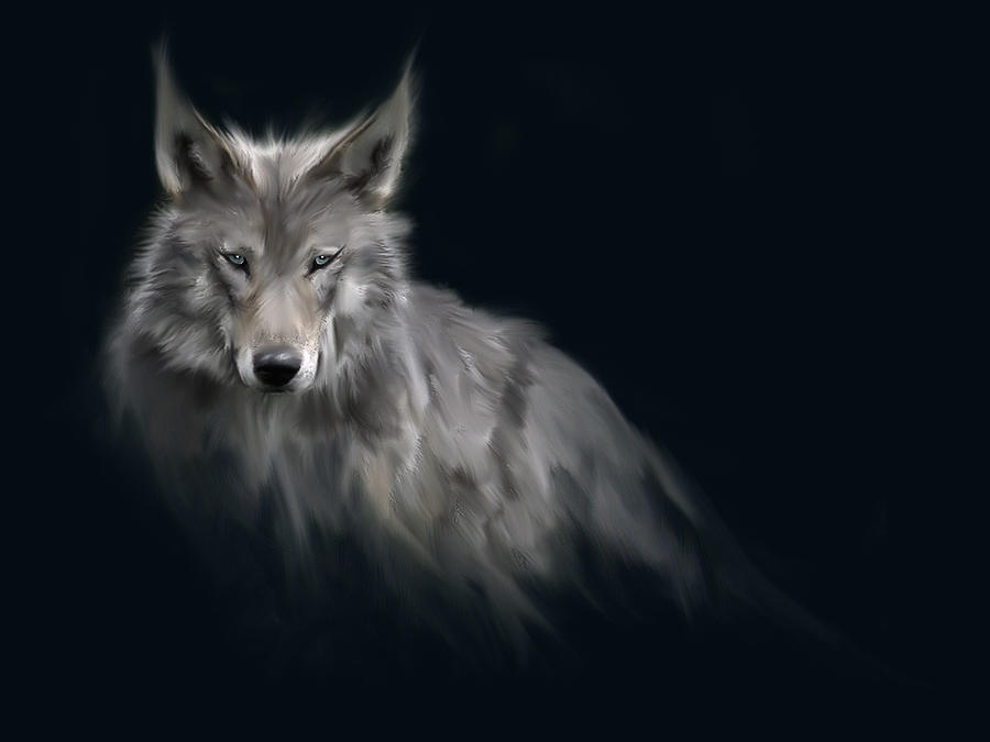 The Wolf by cocco91