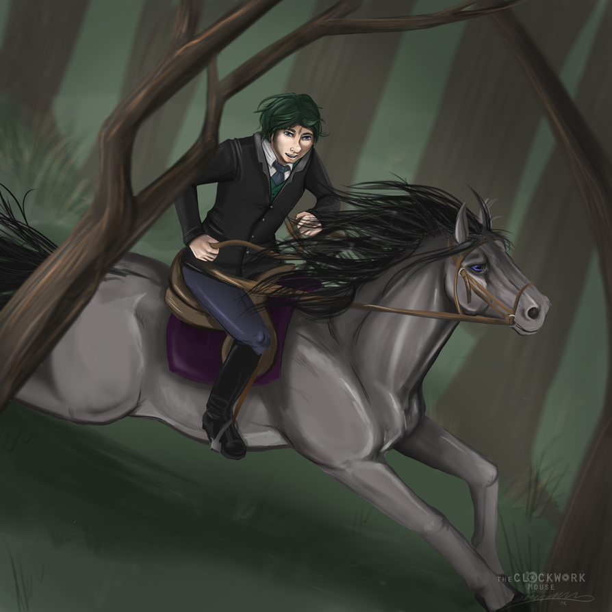 Forest Racing by Nomati