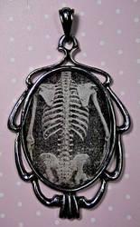 Skull Torso - creepie cameo