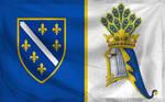 Bosnia-Alternate Flag