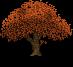 orange_oak_by_lunamoth19-dautgus.png