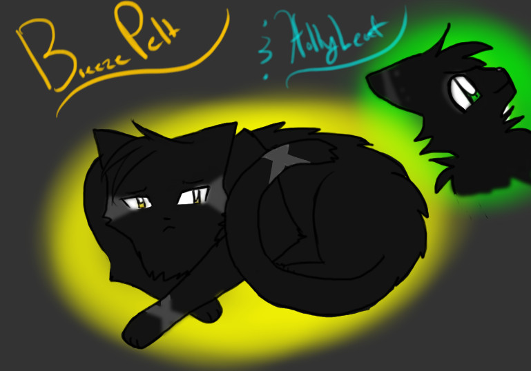 Breezepelt And Hollyleaf By CLmewmewgirl
