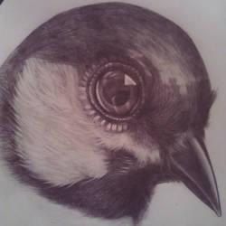 bird by 11proud