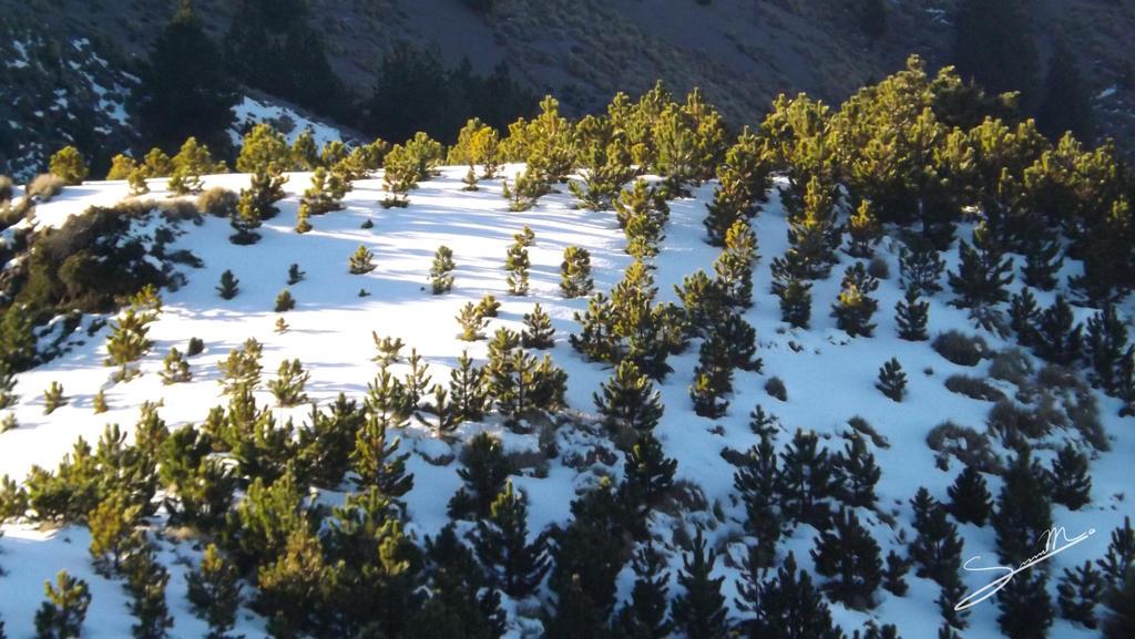 Snowy hils by SilverMoon-Archer