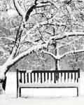 Snowy Bench 02