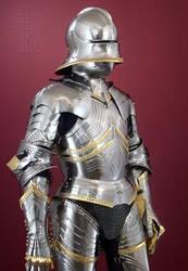 Gothic Armour by Ageofarmour