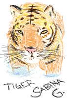 Tiger by Sabinaa