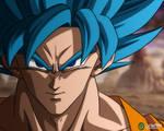 Goku: SSB [DBZ]