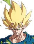 Goku: Super Saiyajin
