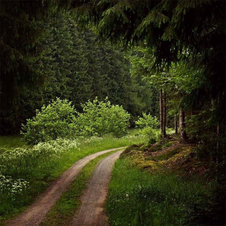 10. Juni 2012 by Filterkaffee