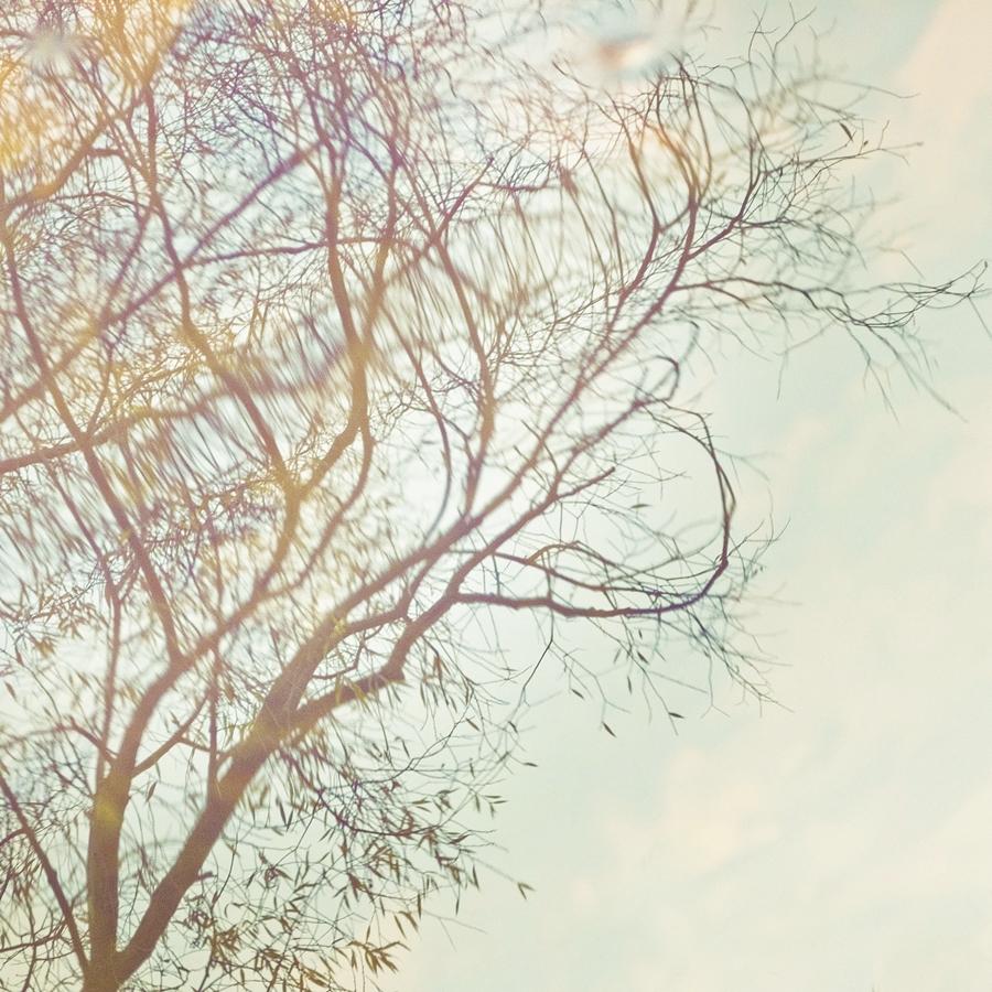 10. November 2012 by Filterkaffee