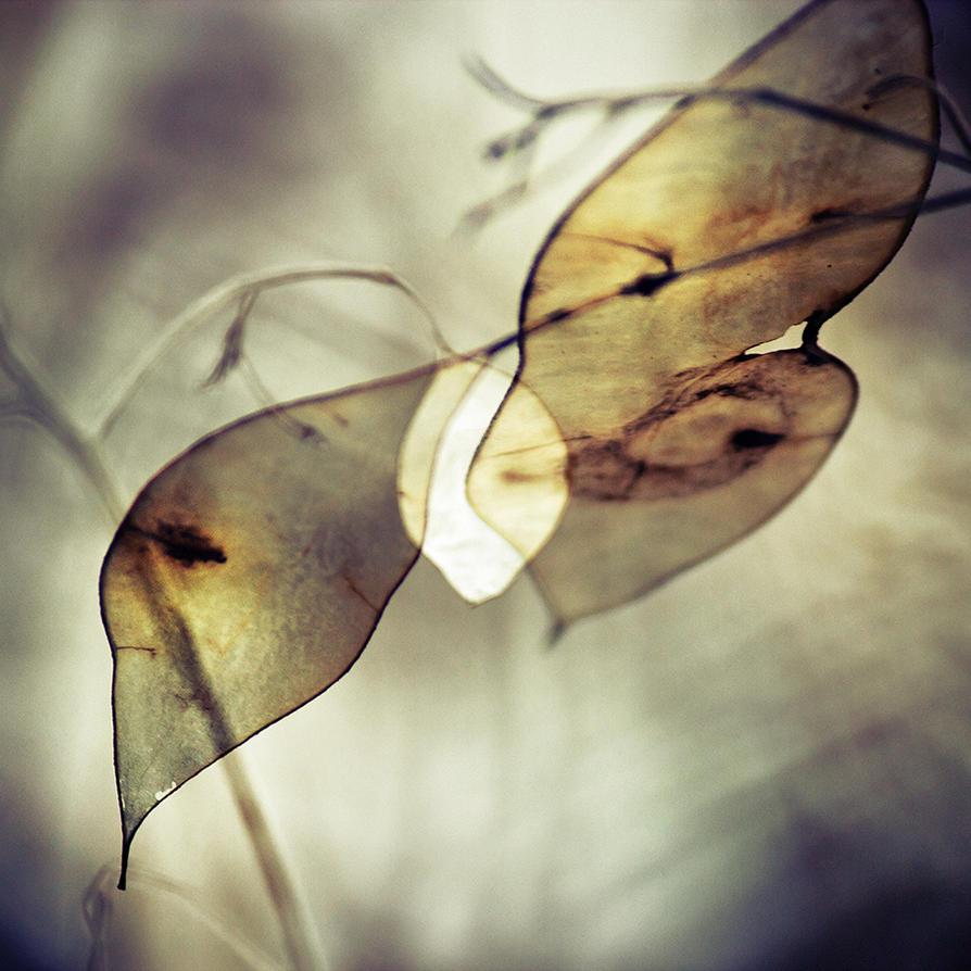 3. Februar 2013 by Filterkaffee