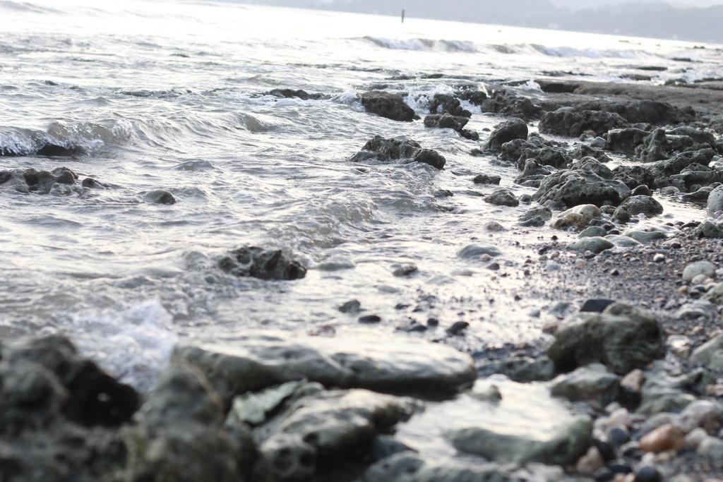 sea by jocelcore