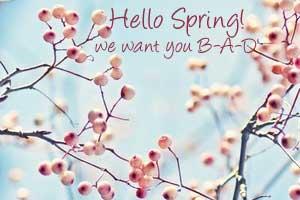 Spring BAD by random-randomness