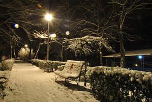 Winter night 5 by rainshine21