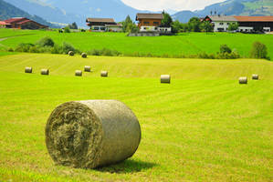 Hay bales on the field by rainshine21