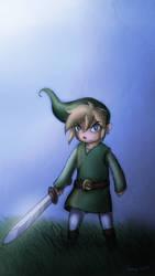 Toon Link again