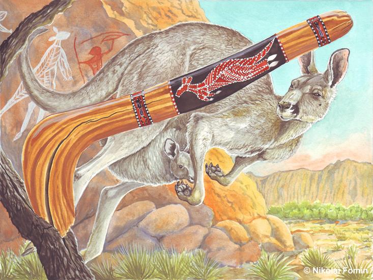 Kangaroo by Nikkolainen