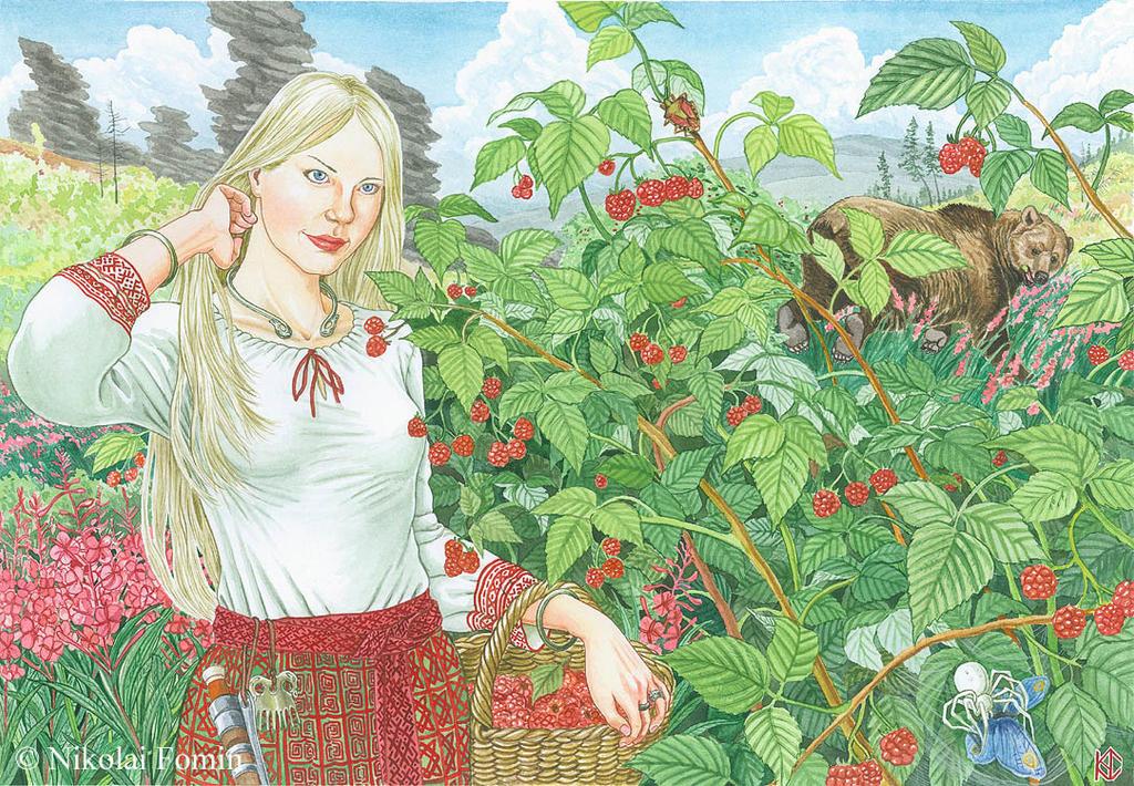 Raspberries by Nikkolainen