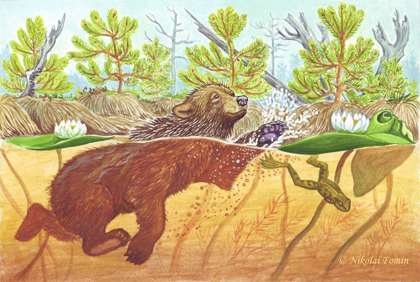 Topotok, the bear cub. Swimming. by Nikkolainen