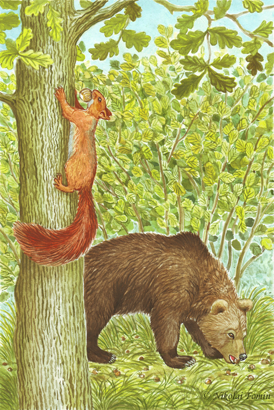 Topotok, the bear cub. Acorn harvest. by Nikkolainen