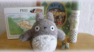 our projects_Totoro