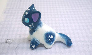 Vanishing Starlight Kitten