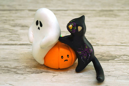 A Sad Ghost and a Cat