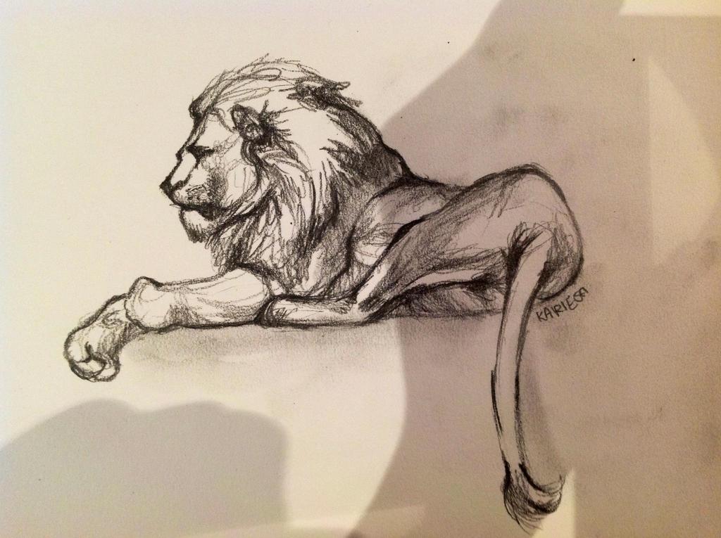 Lion sketch 2 by reecekikluvloot on DeviantArt