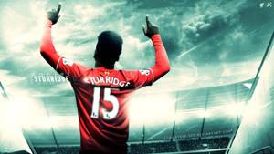 Daniel Sturridge ( Liverpool F.C. ) 2015-16