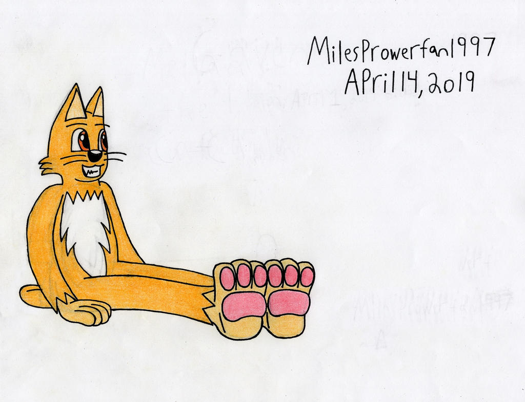 Melvin the Cat