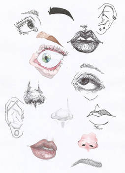 Face Experiments