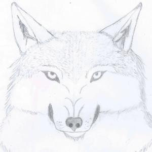 Antonywolf97's Profile Picture