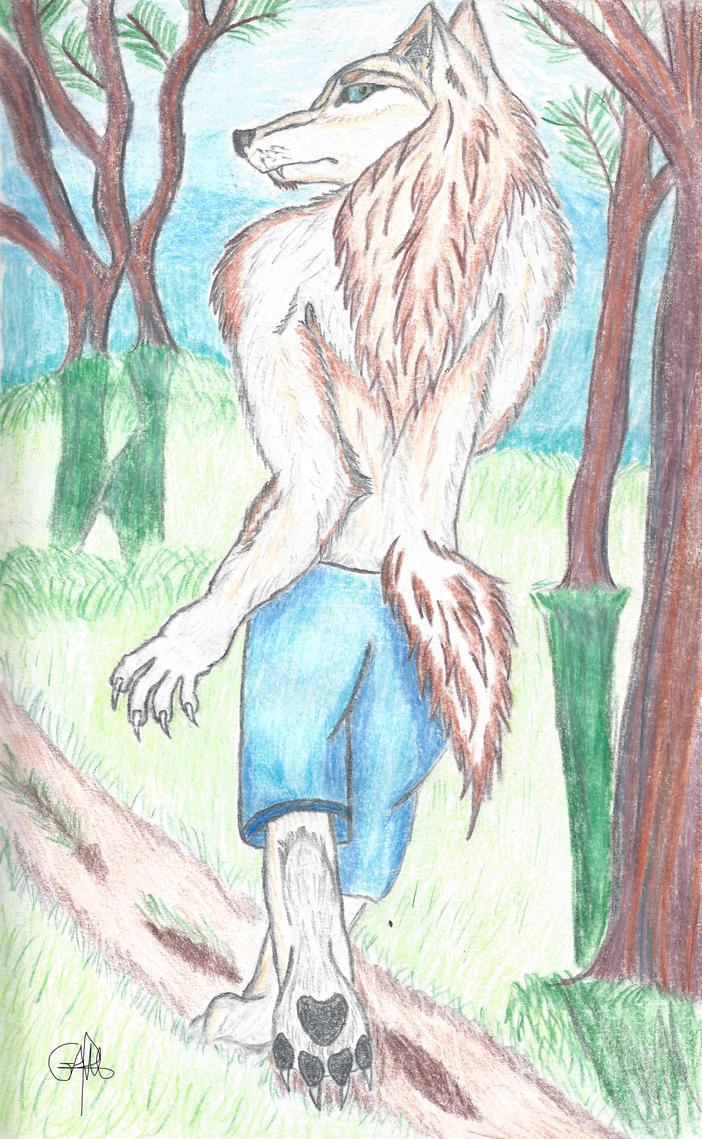 Forest Walk by Antonywolf97