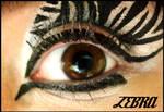 Animal Print Makeup: Zebra