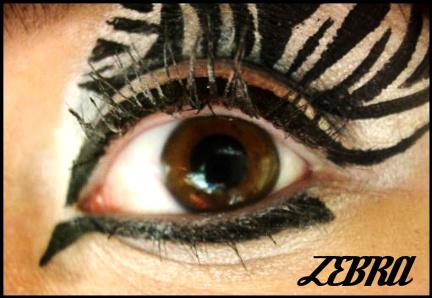 Animal Print Makeup: Zebra by Steffmiesterx13