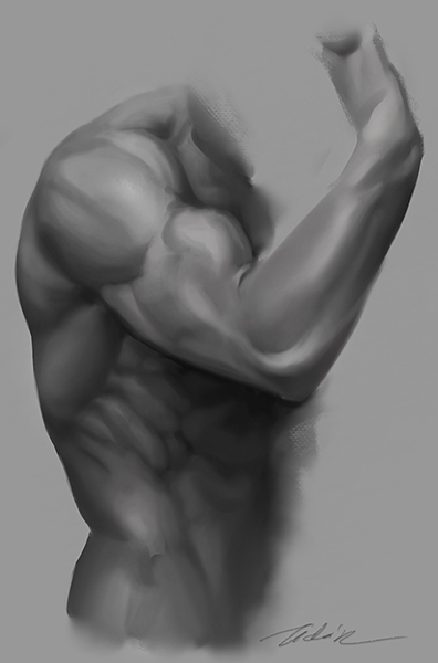 Bicep practice by Feohria