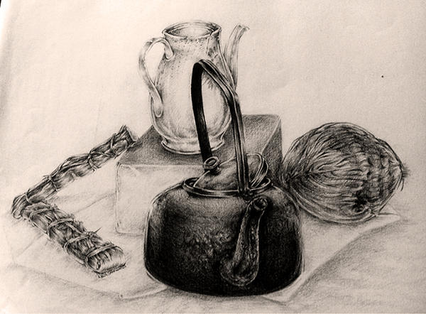 Still life drawing since 2003 #1 by Pearlpencil