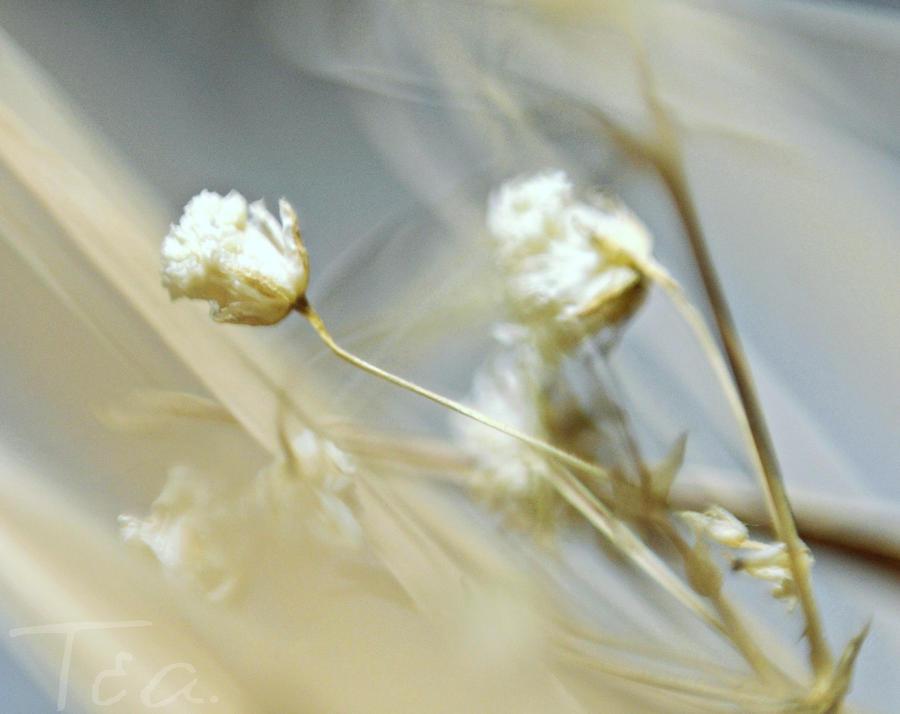 Blue memories by Elena-Alina