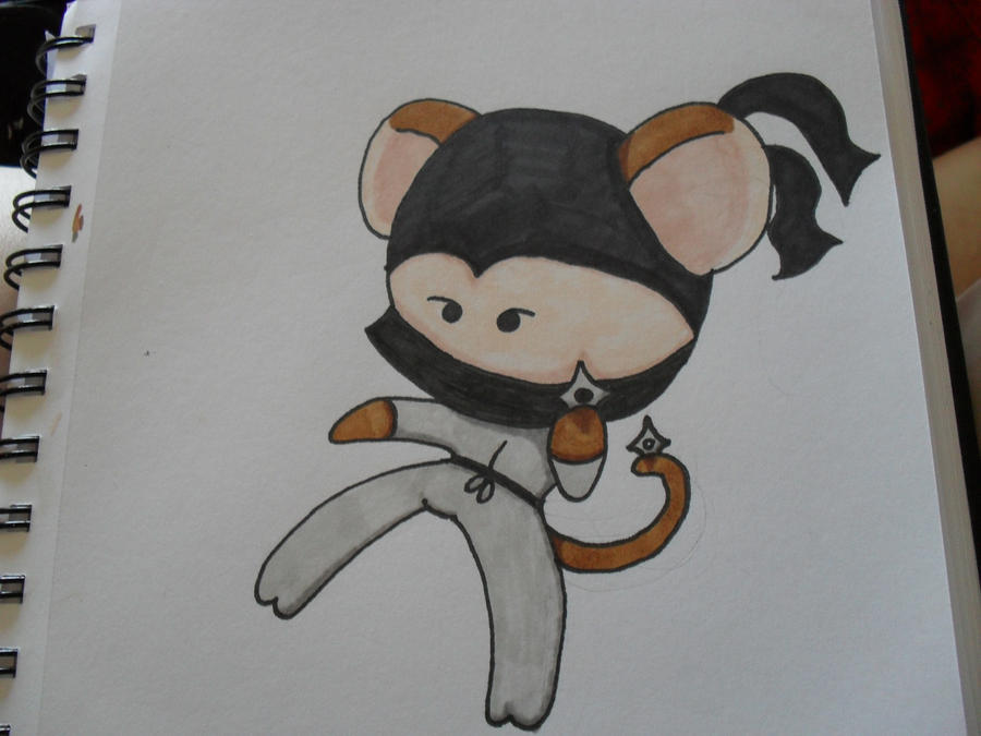 Ninja Monkey by bozrena