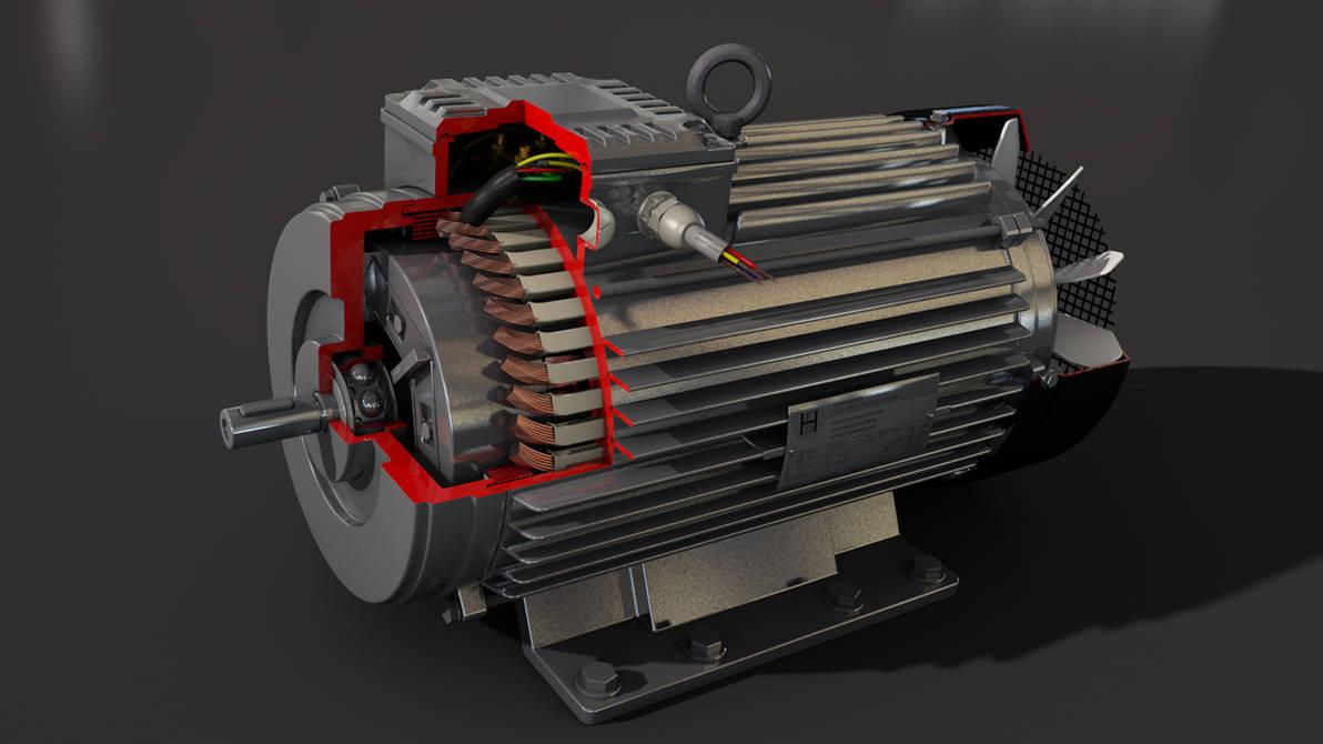 Electric Motor Final Cross Section By Hausmann