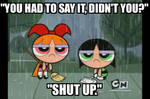 A Blossom and Buttercup meme