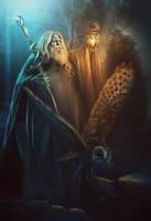 Wizard by Incantata