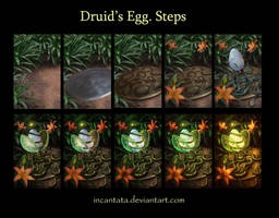 Druid's Egg. Steps by Incantata