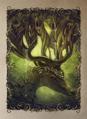 Forest Spirit by Incantata