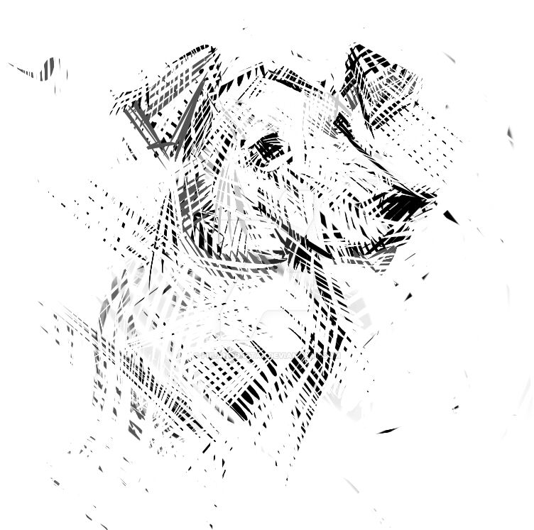 Cachorro by fulanodigital