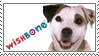 WishBone Stamp by AwesomeStamps