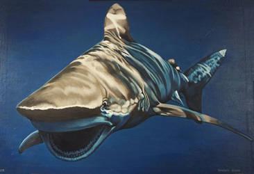 Shark by Artnes80