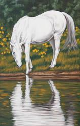 Drinking horse by Artnes80