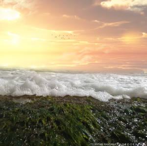 Galle face beach